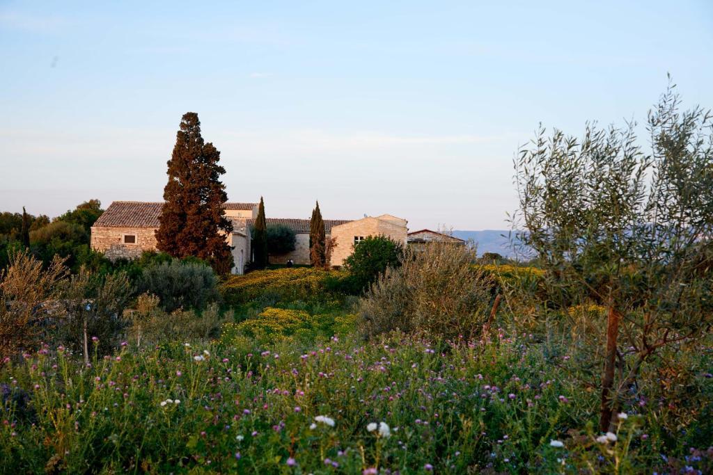 Baglio Occhipinti   Vittoria, Sicily