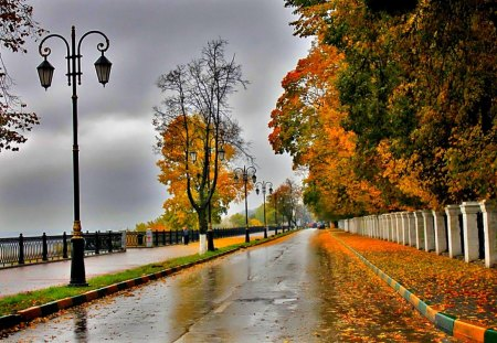 Amsterdam Fall Wallpaper Autumn Rain Other Amp Nature Background Wallpapers On