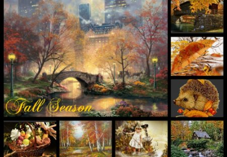 Cute Fall Leaves Wallpaper Fall Season Other Amp Nature Background Wallpapers On