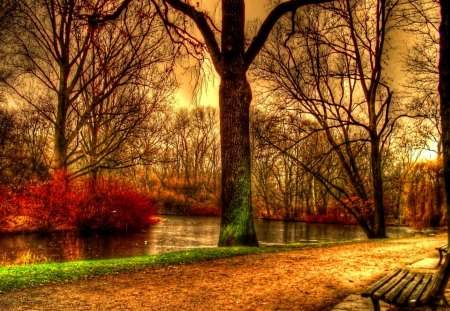 Pretty Fall Desktop Wallpaper Germany Autumn Forests Amp Nature Background Wallpapers On