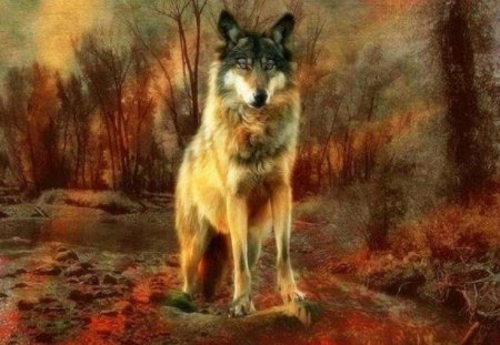 Gothic Fall Wallpaper Autumn Wolf Fantasy Amp Abstract Background Wallpapers On