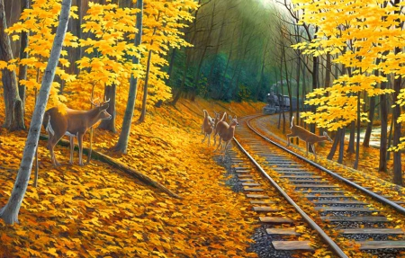Fall Wallpaper With Deer Fall Tracks Other Amp Abstract Background Wallpapers On