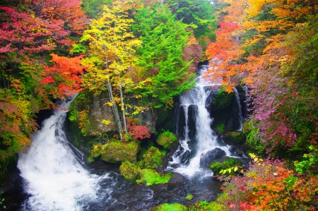 Falling Leaves In Water Live Wallpaper Autumn Waterfall Waterfalls Amp Nature Background