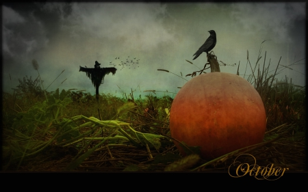 Fall Scarecrow Wallpaper Eerie October 3d And Cg Amp Abstract Background Wallpapers