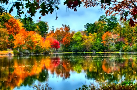 Fall Foliage Desktop Wallpaper November Other Amp Nature Background Wallpapers On Desktop
