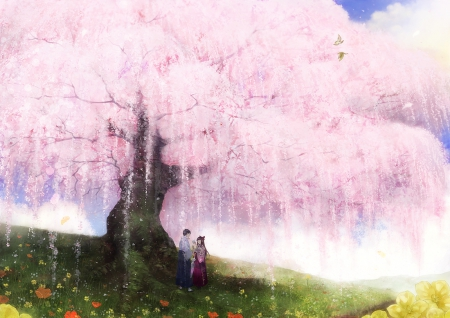 Falling Cherry Blossom Wallpaper Hd Spring Couple Other Amp Anime Background Wallpapers On