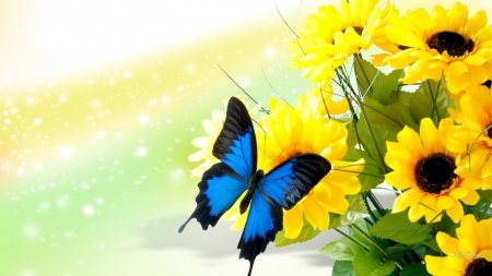 Late Fall Wallpaper Nature Sunflowers And Butterfly Flowers Amp Nature Background
