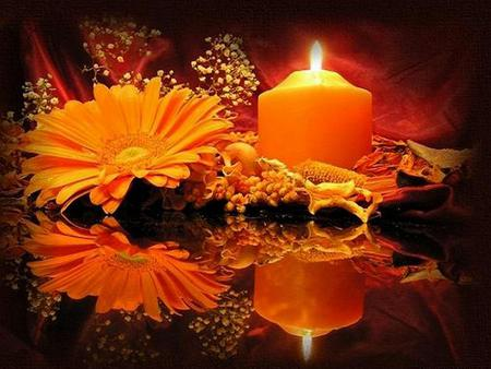 Fall Flowers And Pumpkins Wallpaper Autumn Candle Photography Amp Abstract Background