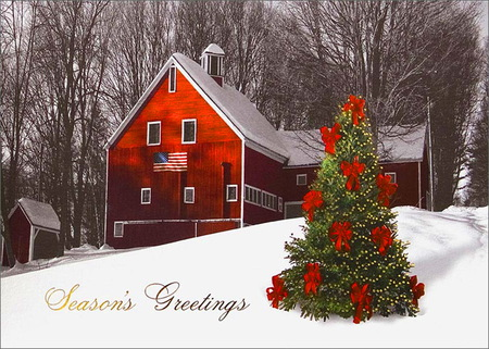 Seasons Greetings America 3D and CG Abstract