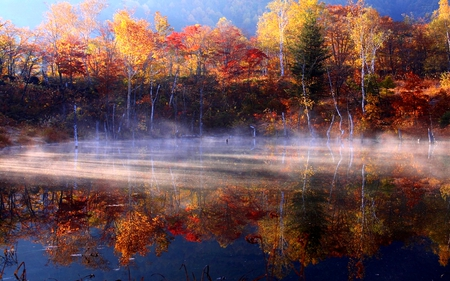 Late Fall Desktop Wallpaper Foggy Autumn Rivers Amp Nature Background Wallpapers On