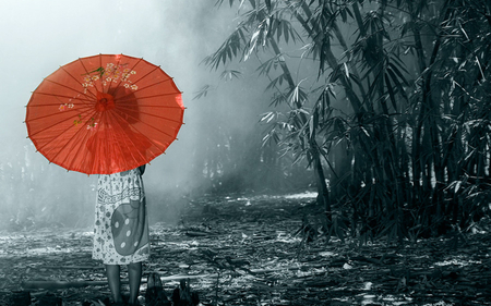RED UMBRELLA Photography Amp Abstract Background