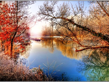 Frosty Fall Leaves Wallpaper Frosty Morning Rivers Amp Nature Background Wallpapers On