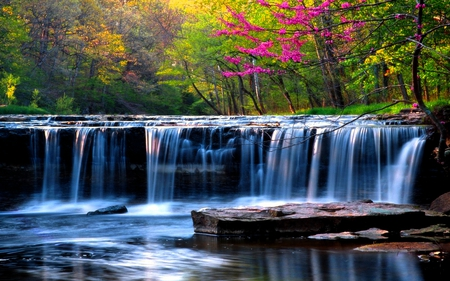 Athirapally Falls Wallpapers Spring Falls Waterfalls Amp Nature Background Wallpapers