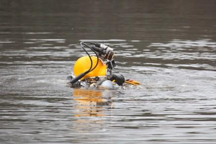 Coal diver (TC)