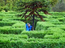 Mike in a maze (LS)