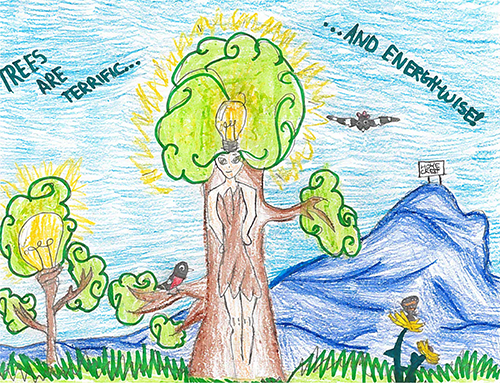2017 Arbor Day Poster Contest Winners