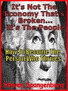 It's Not The Economy...Ebook