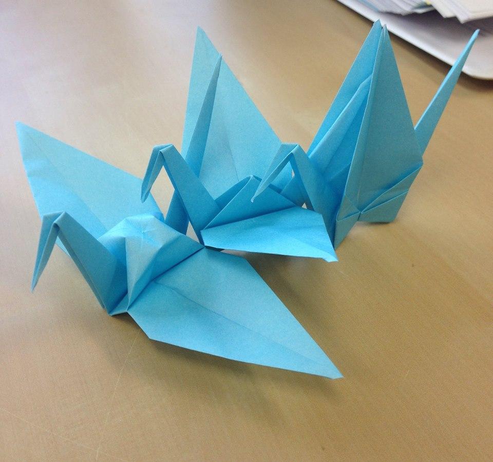 Origami Japanese Cuisine Round Rock Tx
