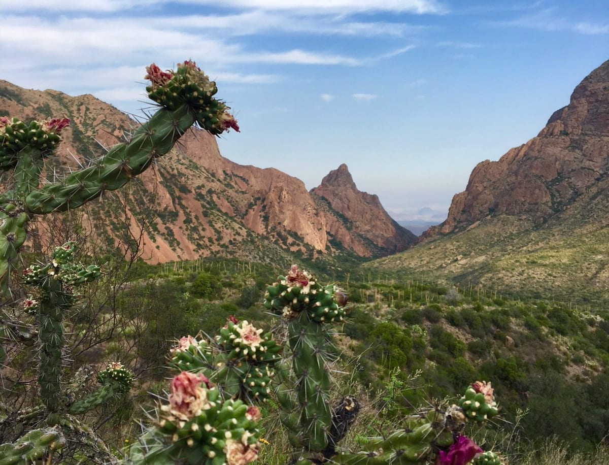 Family Travel Adventures: Visiting Big Bend National Park
