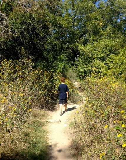 Best Dog Hikes In Austin