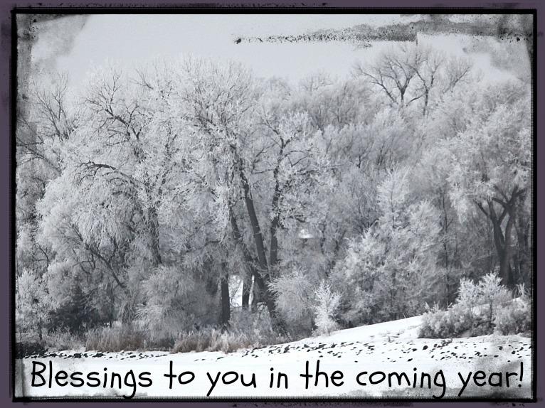 Winter at Lake Mitchell 2