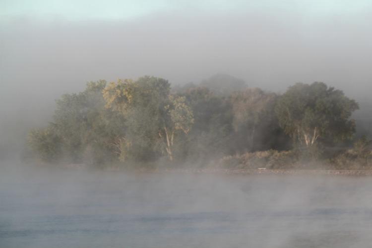 6 Foggy Fall Day