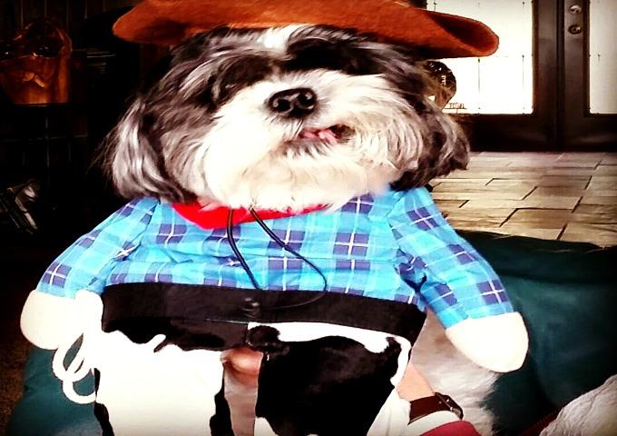 Cowboy Murphy 1