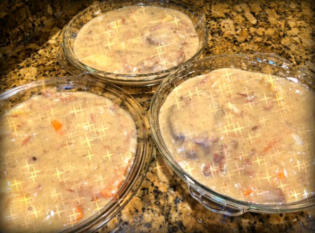 Storing Food in Pie Plates 1