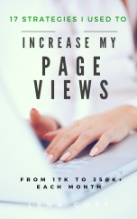 blog-traffic-ebook-monthly-page-views-642x1024