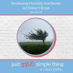 Episode 28: Developing Flexibility that Bends but Doesn't Break