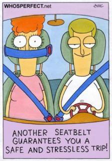 seatbelt_515815