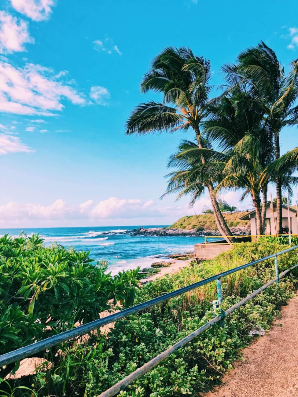 The beautiful coastal town of Paia sits along the North Shore of Maui, mixing hip surf culture and exotic jungle living with the Road to Hana beginning in this little town. In Paia, you will find the best beach in Maui with sea turtles and windsurfing, shops, boutiques, and unique restaurants. #maui #paia #hawaii #seaturtle Paia | Maui | Hawaii | Things to do in Paia | Things to do in Maui | Where to go in Maui | Sea turtles in maui | Things to do in hawaii | where to go in hawaii | Road to Hana