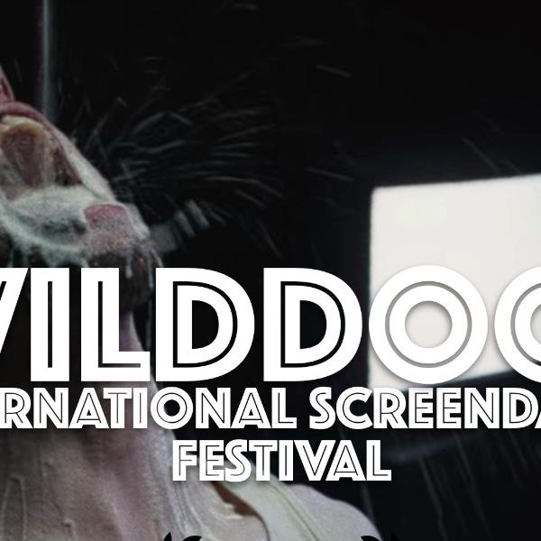 [ONLINE] WildDogs International Screendance Festival 2021 - Program C