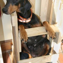 Old Lady Chair Princess Throne The Senior Doberman Project