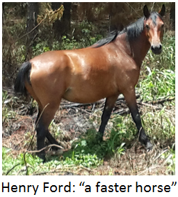 "Henry Ford: ""customers want a faster horse"