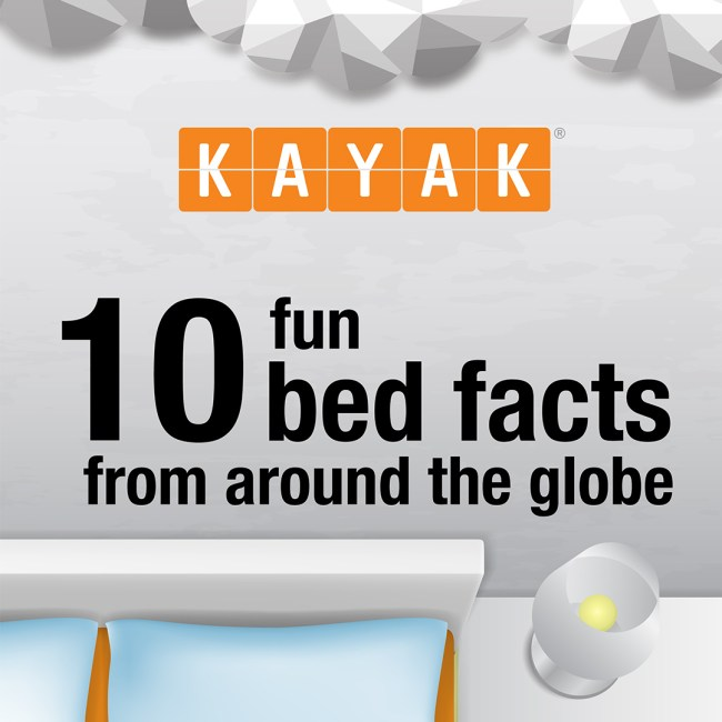 KAYAK Infograpic
