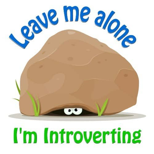 Leave Me Alone I'm Introverting