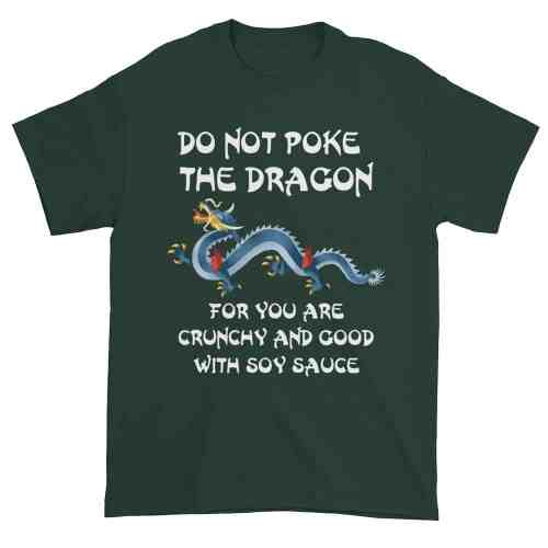 Do Not Poke the Dragon (forest)