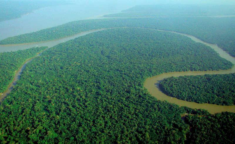 Amazonia-z-lotu-ptaka