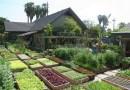 Małe rodzinne gospodarstwo produkuje ponad 2,7 tony żywności rocznie na niecałych 400 m2
