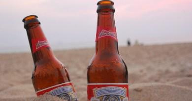 Praca marzeń? 64 tys. dolarów za podróżowanie i picie piwa