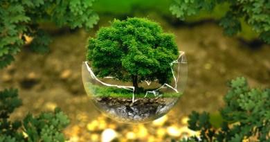 Naukowcy radzą, jak prowadzić ekologiczny styl życia