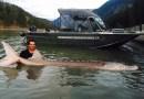 Nick Mc Cabe i jego życiowy połów – legendarny jesiotr z rzeki Fraser. Złapany i wypuszczony