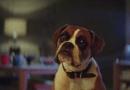To już kolejny rok z rzędu świąteczna reklama sklepu John Lewis porusza serca ludzi
