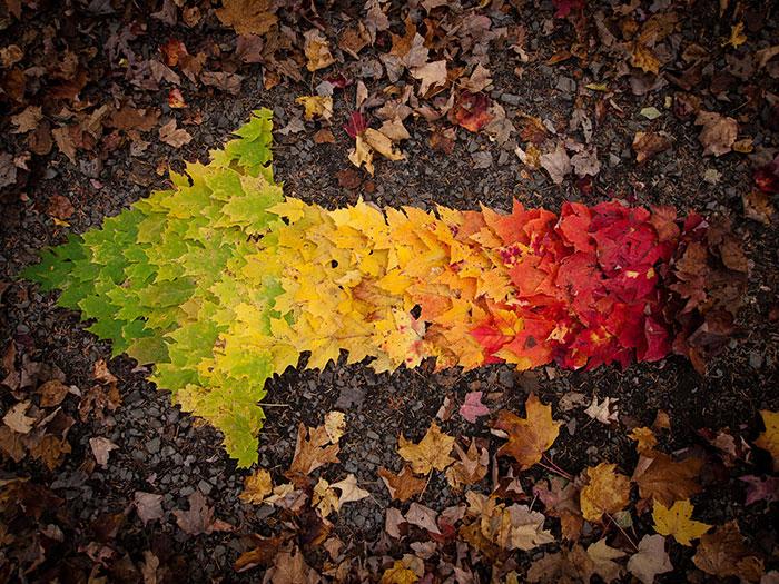 rainbow-color-change-nature-127__700