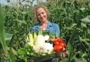 Jak zrobić pestycydy organiczne – receptury, które naprawdę działają!