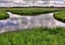 Skrzyżowanie rzek Nielby i Wełny – jedyne zjawisko w Europie i jedno z dwóch na świecie