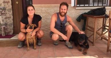 Oto serwis, który umożliwia podróżowanie po całym świecie w zamian za opiekę nad zwierzętami