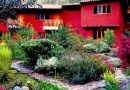 Kto chce być menedżerem hotelu w Świętej Dolinie Inków?