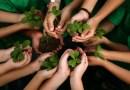 Zasadzą tyle drzew, ile urodziło się dzieci